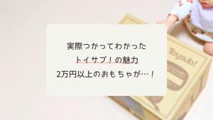 【10ヶ月】トイサブ!届いたおもちゃは2万円以上!1500円割引クーポン紹介も