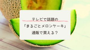 「まるごとメロンケーキ」を通販で!坂上&指原のつぶれない店で紹介!#萌え断